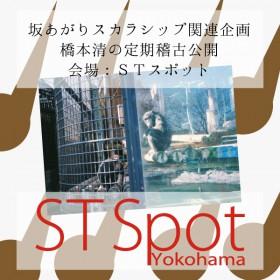 hashimoto_koukaikeiko_sum