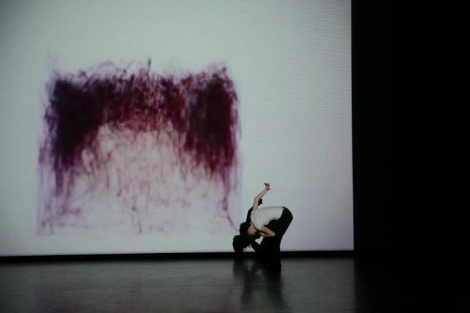 公演写真:横浜ダンスコレクション作品「MI-gaku」 クレジット:塚田洋一